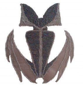 corynorhinus